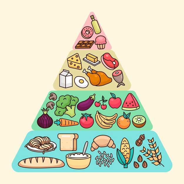Diferencias entre dieta y nutrición